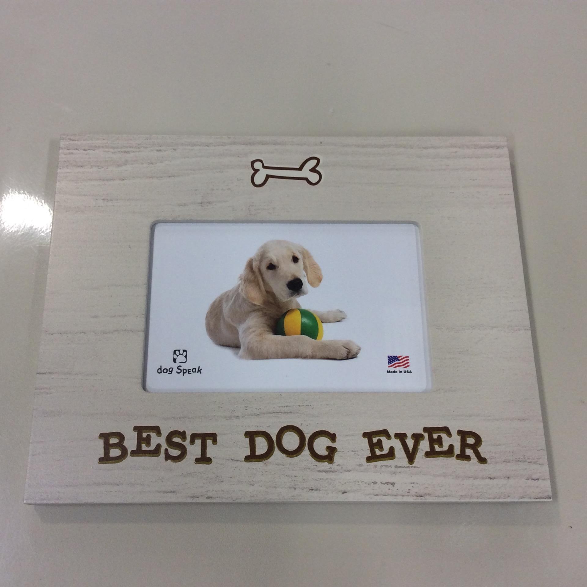 Frame Best Dog Ever Welcome To ädelbrook